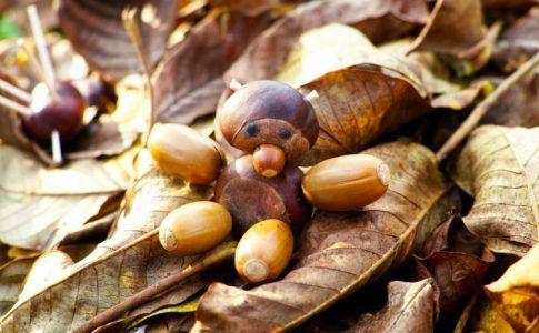 Männchen aus Kastanien auf Blättern