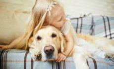 Kleines Mädchen umarmt einen Golden Retriever