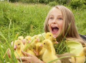 Küken auf dem Bauernhof verzaubern Kinder
