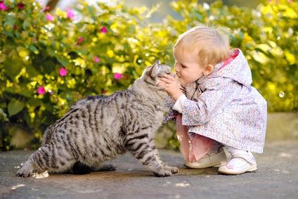Haustiere bereichern das Leben, sind wohltuend und beglücken den Alltag.