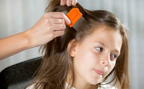 Mädchen wird mit einem Läusekamm auf der Suche nach Läusen behandelt