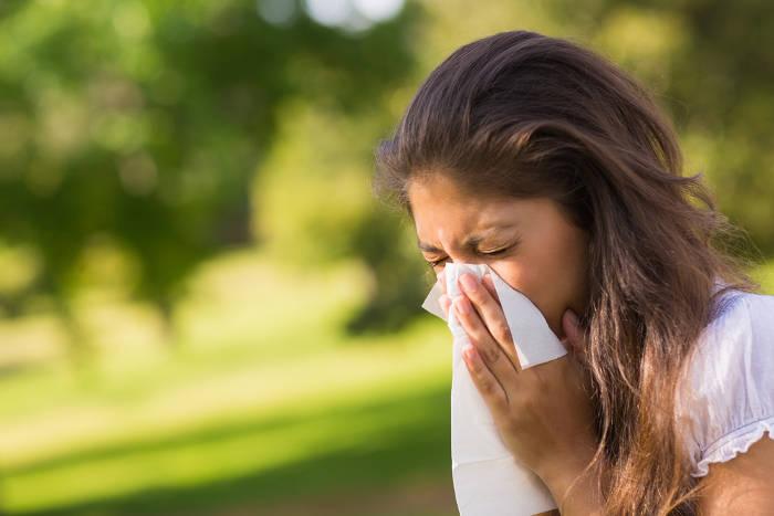 Pollenallergie im Sommer