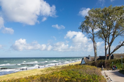 Ein Strandpanorama mit Dünen und Sandstrand.