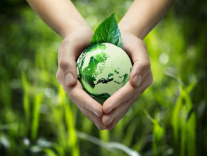 Birkenstock betreibt Umweltschutz