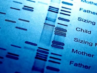 Vaterschaftstest wichtige Infos im berblick