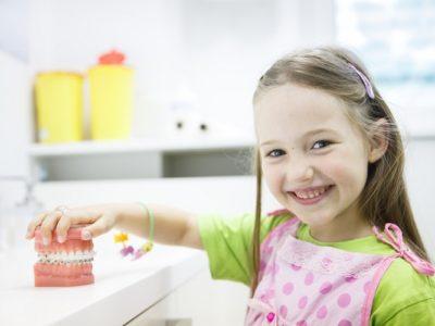 Kleines Mädchen hält Modell-Gebiss fest beim Zahnarzt