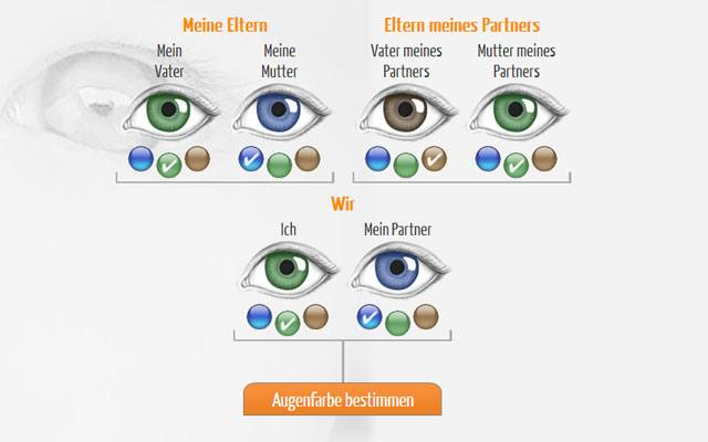 Augenfarbenrechner - Augenfarbe Baby