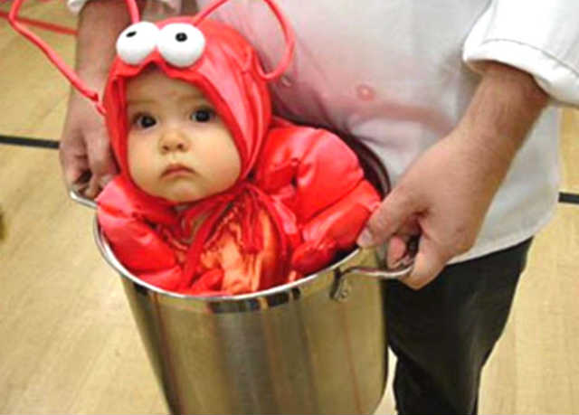 funny baby picture beetle costume