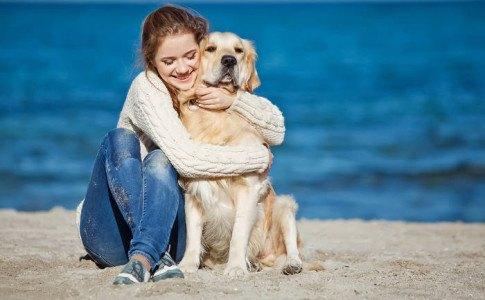 familienfreundliche hunderassen
