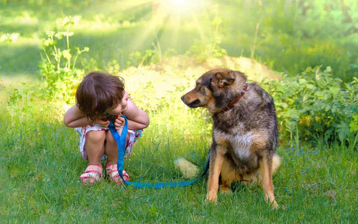 kinder und hundewunsch