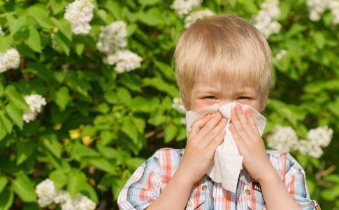´Junge putzt sichim Garten die Nase