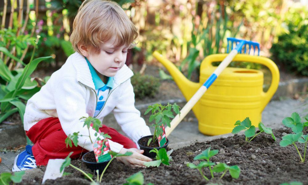 Kind sät im Garten Pflanzen aus