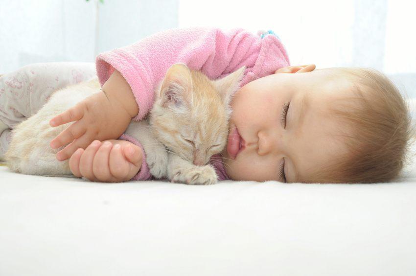 Baby und Katze